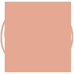 Illustration der Himmelsscheibe von Nebra
